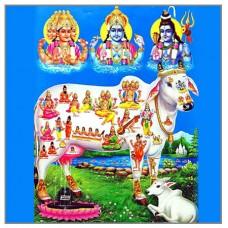Gau Beej Mantra Japa Vidhan