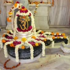 Parthiv Shivlinga Pooja