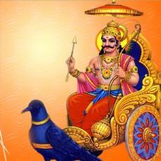 Shani Dosh Nivaran Pooja