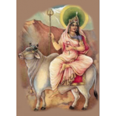Shailputri - The Goddess of First Navaratri