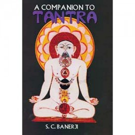 A Companion Of Tantra