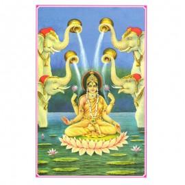 Dus Mahavidya Goddess Kamala Photo