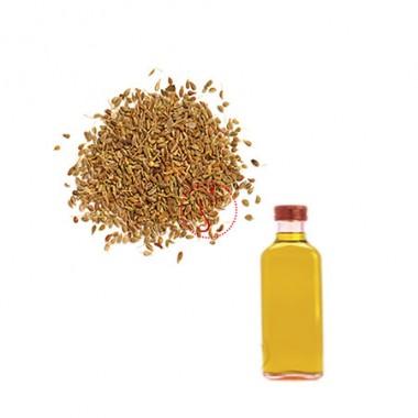 Ajwain Essential Oil