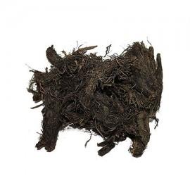 Jatamansi (Musk root)