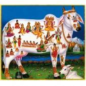 Gau Dan (Cow Donation)