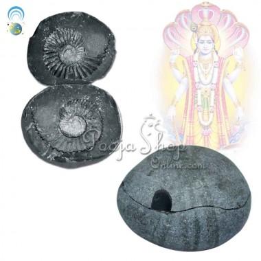 Chakra Dhari Vishnu Shaligram