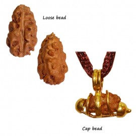 Rudraksha Sandhi for Liberation (Moksha)