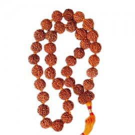 Six Mukhi Rudraksha Kantha Mala